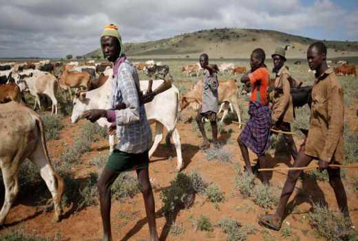 Bandits kill two, steal herd of cattle in Samburu North