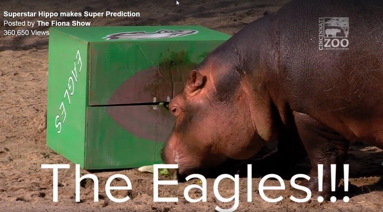 MY BABBY FIONA WAS RIGHT!!!  #Eagles  #Superbowl2018  #TeamFiona https://t.co/4uG5tvlvGF