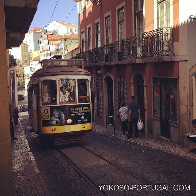 test ツイッターメディア - リスボンの路面電車12番。バイシャ地区、モウラリア地区、アルファマ地区を結ぶサークルライン。1番人気の28番が混雑している場合は、こちらもおすすめです。 #リスボン #ポルトガル https://t.co/iWwrDQU4e6