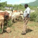Herders shot dead, police reservist injured in latest Kerio Valley attack