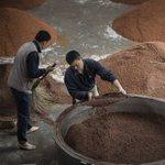 Sorghum farmers snared in growing China-US trade dispute