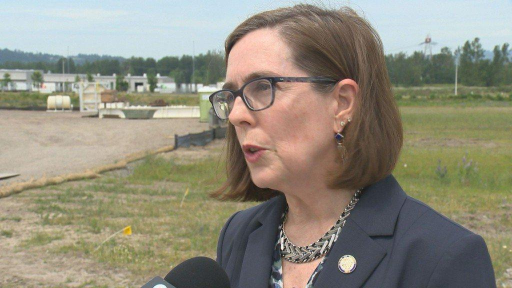 Gov. Brown declares addiction a public health crisis