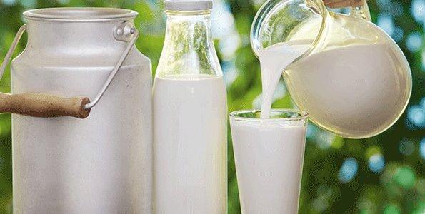 Meru herders secure milk market