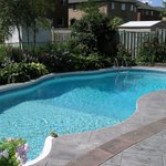 Private home owners scale up demand for swimming pools