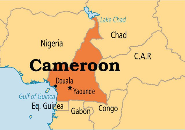 Cameroon's army denies alleged atrocities in restive anglophone regions