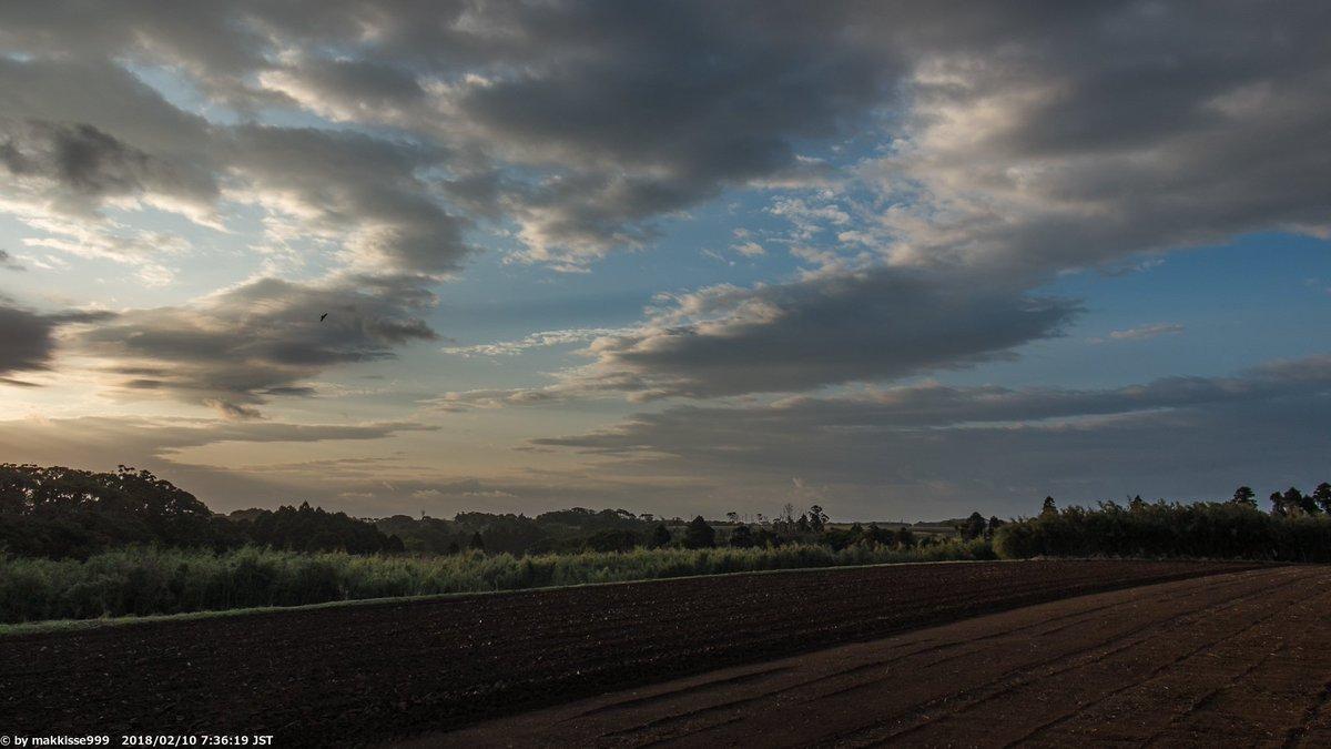 おはようございます。朝の空です。今までの低温から急に暖かくなってますが、今日はこれから雨の予報です。#イマソラ #空 #Tanegashima https://t.co/MGoKGJOlhI