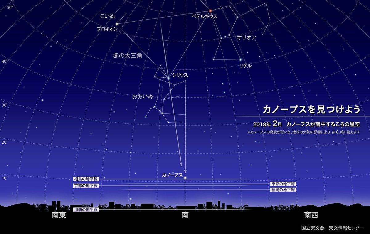 【ほしぞら情報】カノープスは全天で2番目に明るい1等星ですが、日本の多くの地域では南の空の低い位置にあるため、なかなか見つけにくい星です。夜更け前にカノープスが南中する2月は観察のチャンスです https://t.co/LHAyzzPxCl #国立天文台 https://t.co/khH53HKHRH