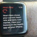 Apple Watch Series 3: More Proof Smartwatch Is A Huge Hit