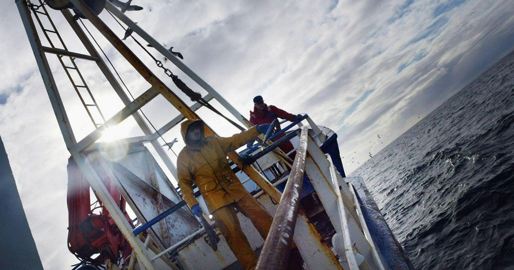Large-scale commercial fishing covers more than half of the oceans, study finds https://t.co/zonkPvcQbi https://t.co/OMARhXonvJ