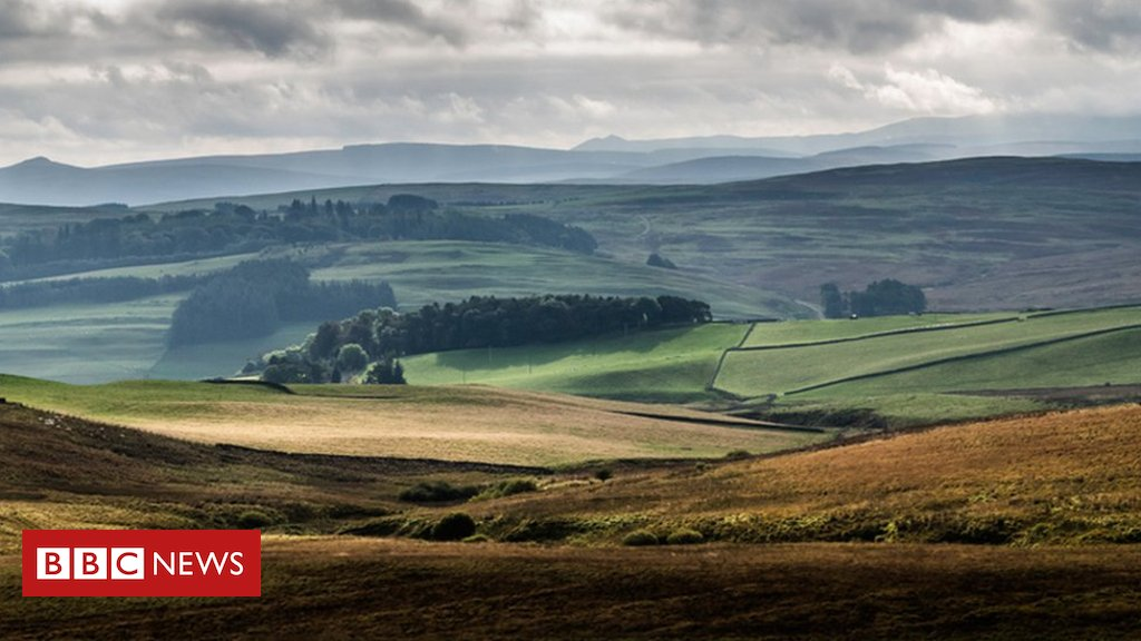 Land release move to attract new farmers