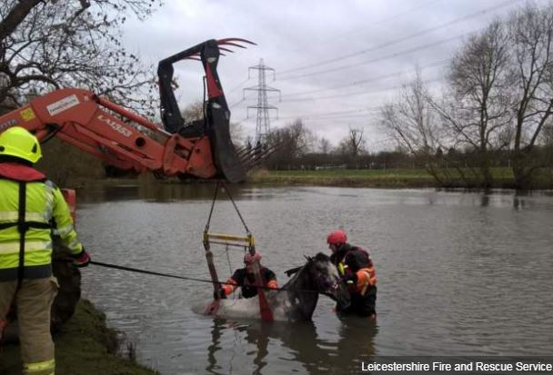 Stranded horse rescued from River Soar https://t.co/wfmHaZAyf0 https://t.co/WHH7hCCLdK