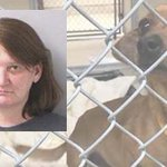 Woman indicted after 3 dogs found dead in Butler County home