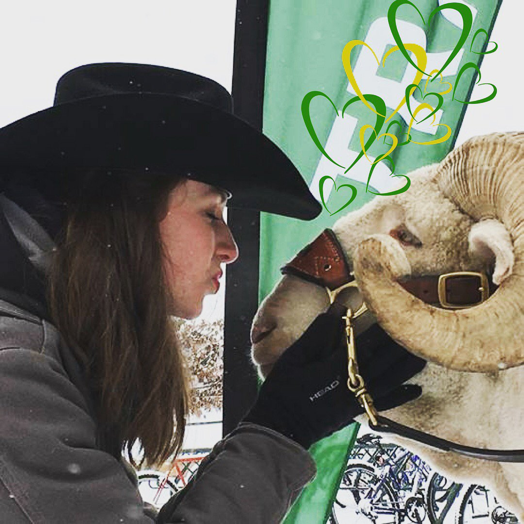 RT @CSUAlumni: From our ❤️❤️❤️ to yours on #ValentinesDay. #coloradostate https://t.co/3HpePfBCTQ