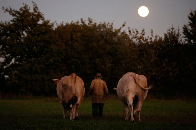 French farmer finds happiness in life before machines
