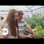 Simple and green aqua farming in South Africa | DW English