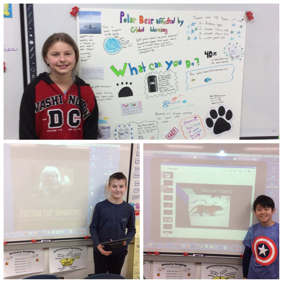 test Twitter Media - These students worry about global warming and habitat destruction endangering animals. #d30learns #wbplays https://t.co/tz0UBKssTN