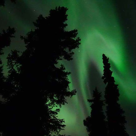 Space weather and the havoc caused by the sun