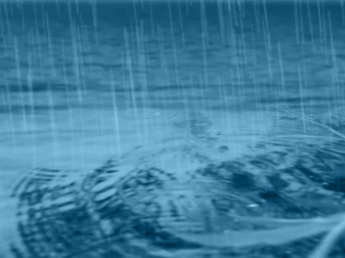 Soggy weather expected to soak the Stateline next week