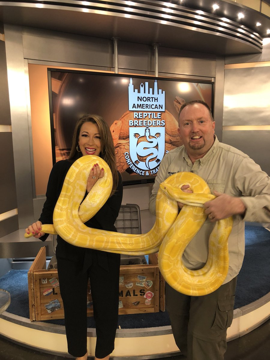 test Twitter Media - I had no idea how many people seriously detested 🐍 snakes until we did this segment! I grew up with them so I guess I didn't give it a second thought. 🤷🏽‍♀️🦄 https://t.co/pX6JzFzPMh