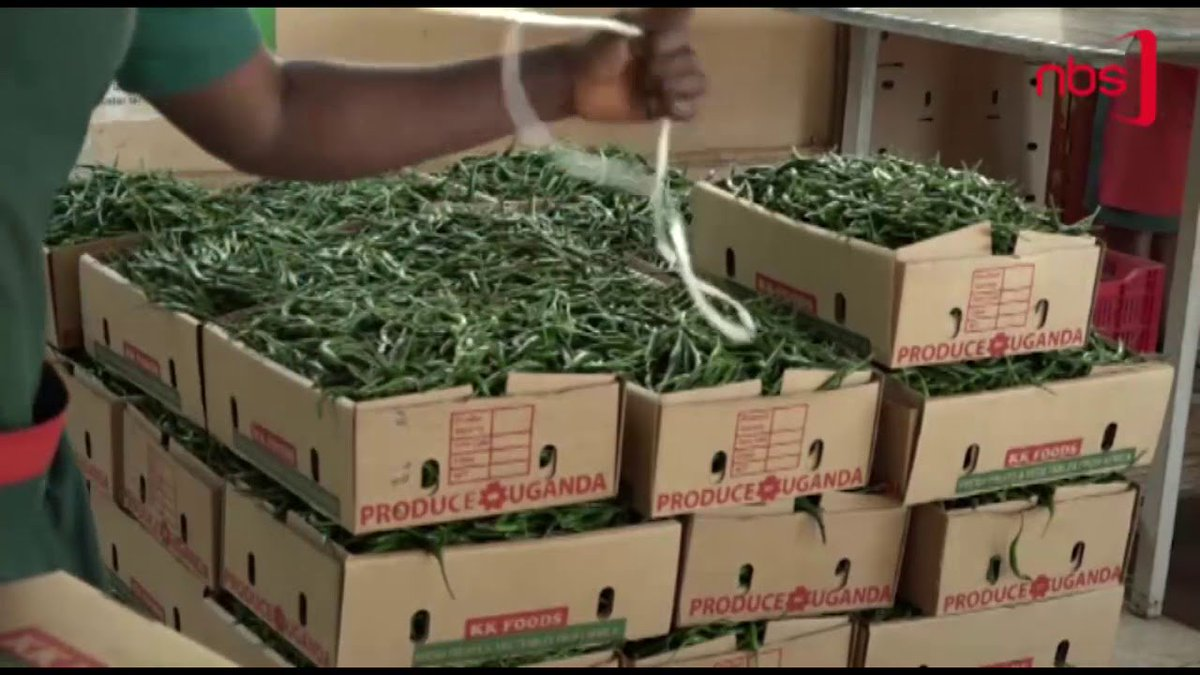 Global Demand for Hot Pepper Edges up