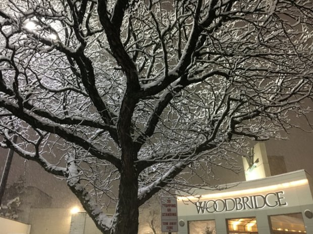 Latest N.J. weather: Here's how much snow fell in your area