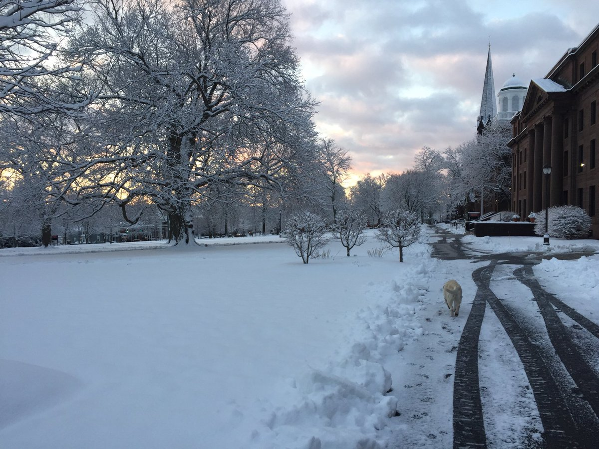 test Twitter Media - Still winter @Wesleyan_u https://t.co/EGfR1pMguG