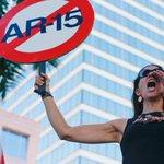 Protests highlight growing calls for gun control after Florida shooting