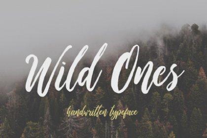Wild Ones Free Demo Font Fonts freebies design SocialMedia