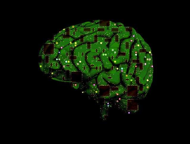 test Twitter Media - Descifran el código para restaurar la creación de recuerdos en cerebros envejecidos o dañados https://t.co/TMcvrF5Ikp @infosalus_com https://t.co/2YtU2XRFrz