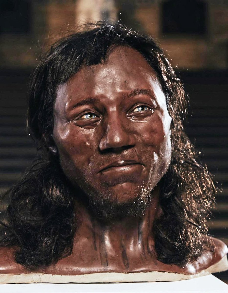 Did Cheddar Man's group also settle in the Channel Islands?