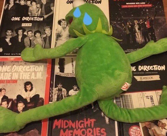 RT @bedroomflicker: Can you believe one direction turns 8 this year https://t.co/OHcls3VbnF