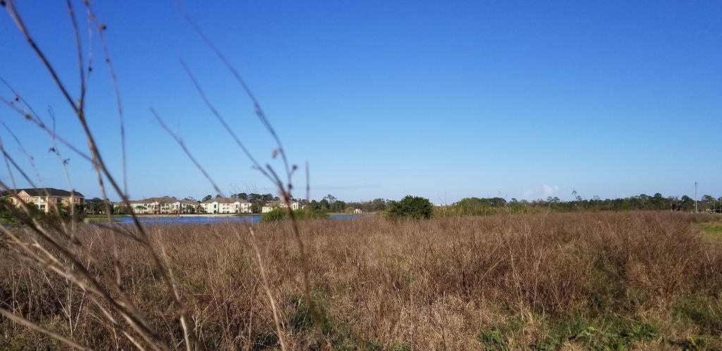 Hundreds of apartments could be coming to Port Orange