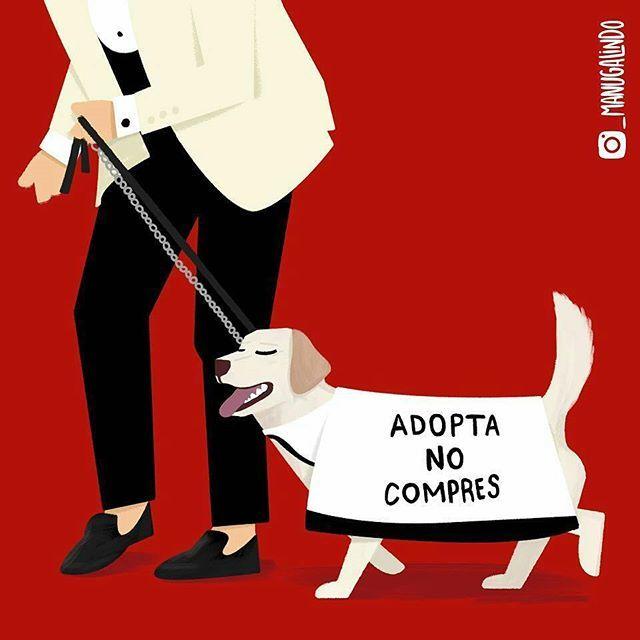 Hermoso trabajo de Manu Galindo.  #AdoptaNoCompres https://t.co/ONqJCYwDeU