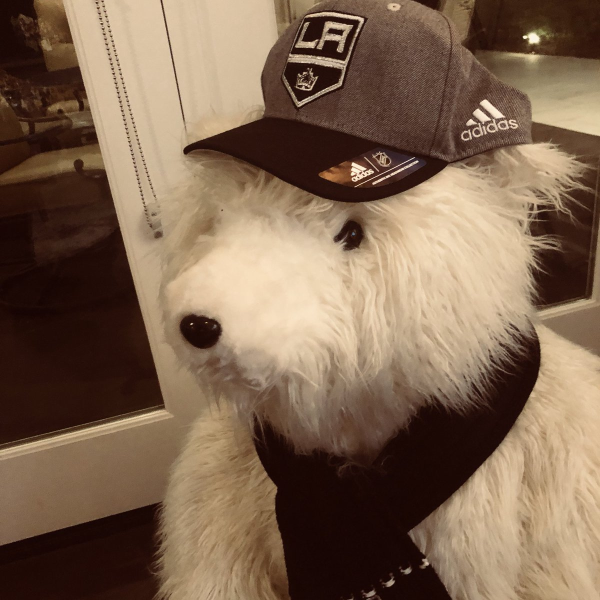 I was told by the big boss not to take #EliRobitaille's lucky hat off. 😂 3-0 end of the second.  @LAKings #GoKingsGo https://t.co/wiyH9MKiDj