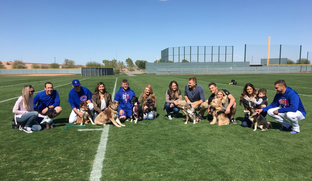 #EverybodyIn, even the dogs. ��   Catch the puppy party on #Cubs Snapchat and Instagram Stories! https://t.co/Tss9Q5iOf3