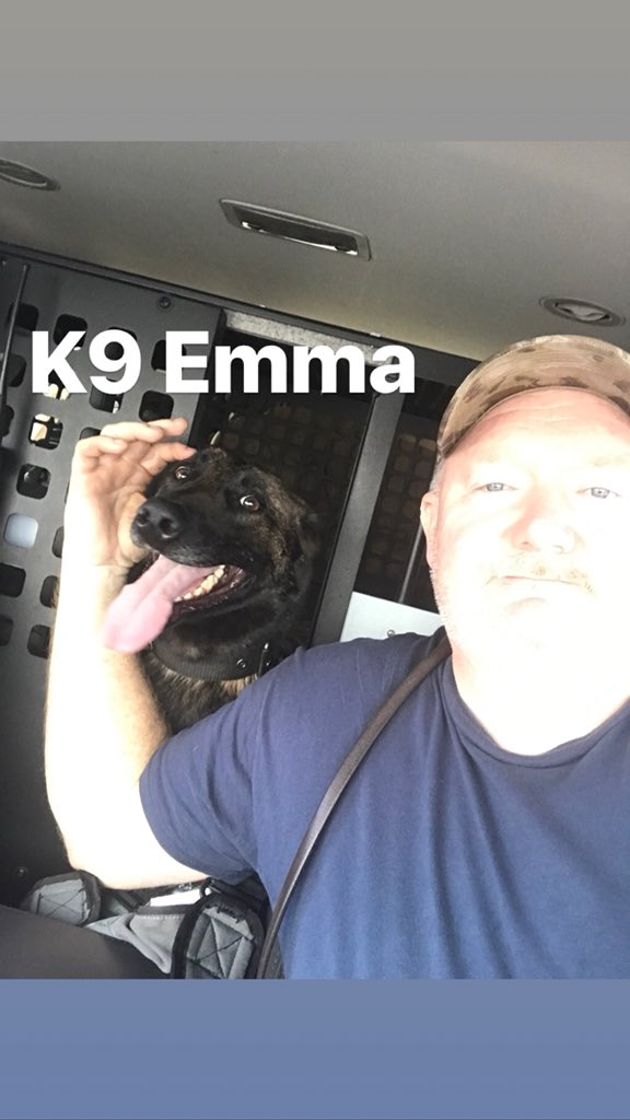 RT @horrycountypd: Happy #NationalLoveYourPetDay from K9 Ori and K9 Emma (& handler Craig Hutchinson)! 👮‍♂️💙🐾 https://t.co/GaxH3yL7EP