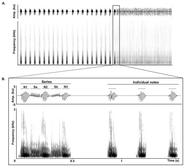 test Twitter Media - Ontogeny of long-range vocalizations in a Neotropical fossorial rodent: the Anillaco Tuco-Tuco (Ctenomys sp.) https://t.co/DDib2LIr8o https://t.co/KfKLOFwtop