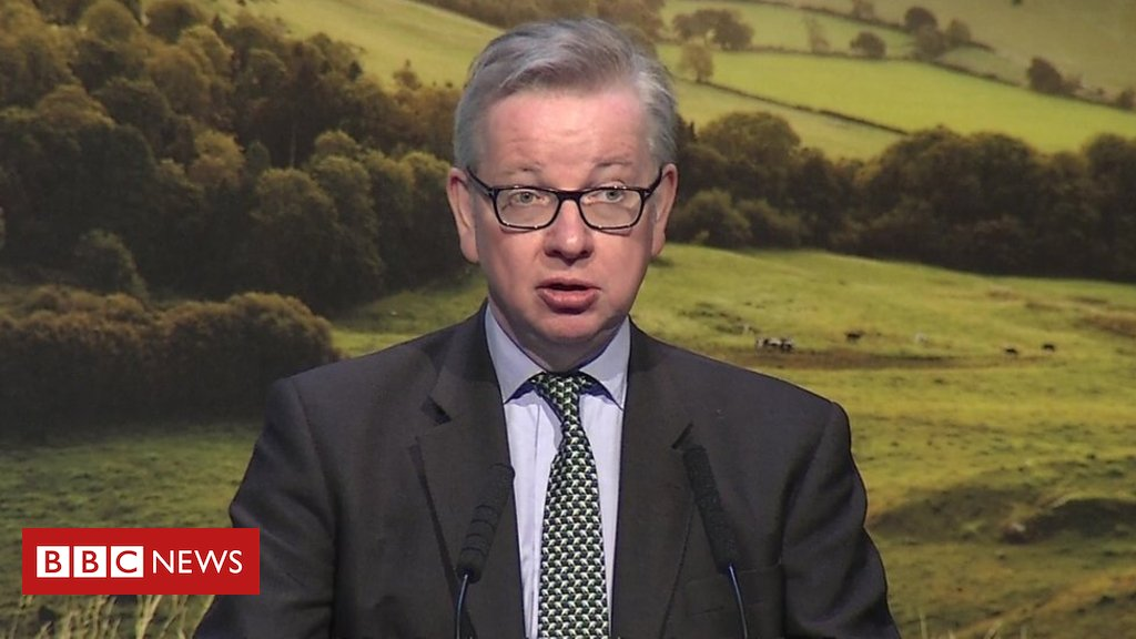 Gove backs seasonal workers scheme for UK farms after Brexit