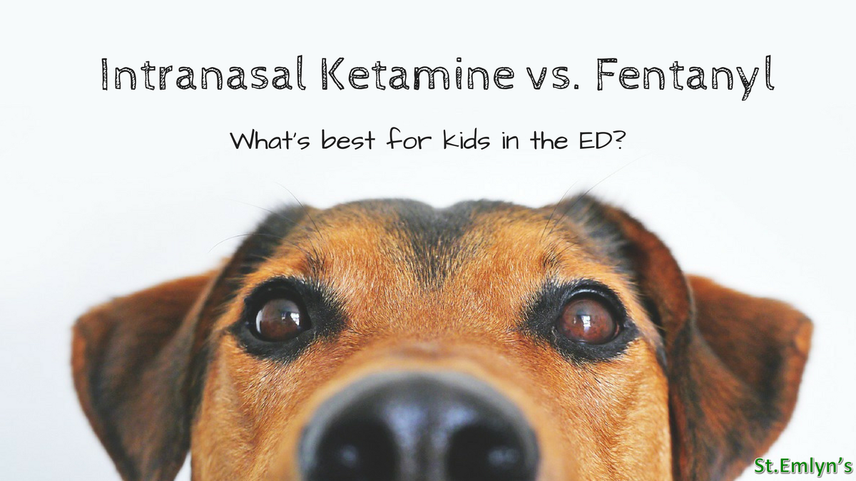 test Twitter Media - peds pain control: IN ketamine vs fentanyl by @EMManchester at @stemlyns https://t.co/vIWmRe8QfJ -ST https://t.co/F4SOsPPvEH
