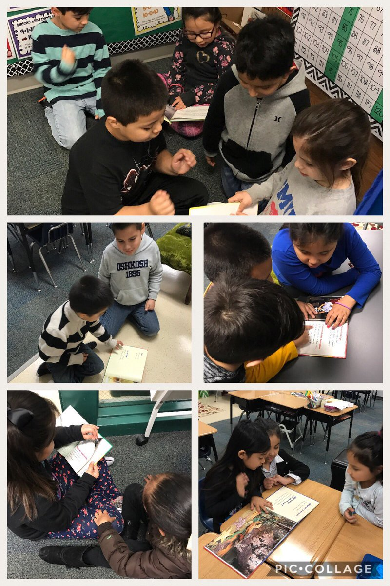 Animal research project, investigación sobre animales #ThinkBig #misdProud #1stgradebilingual @JAVitovsky_Elem https://t.co/9ryYMCLqzp