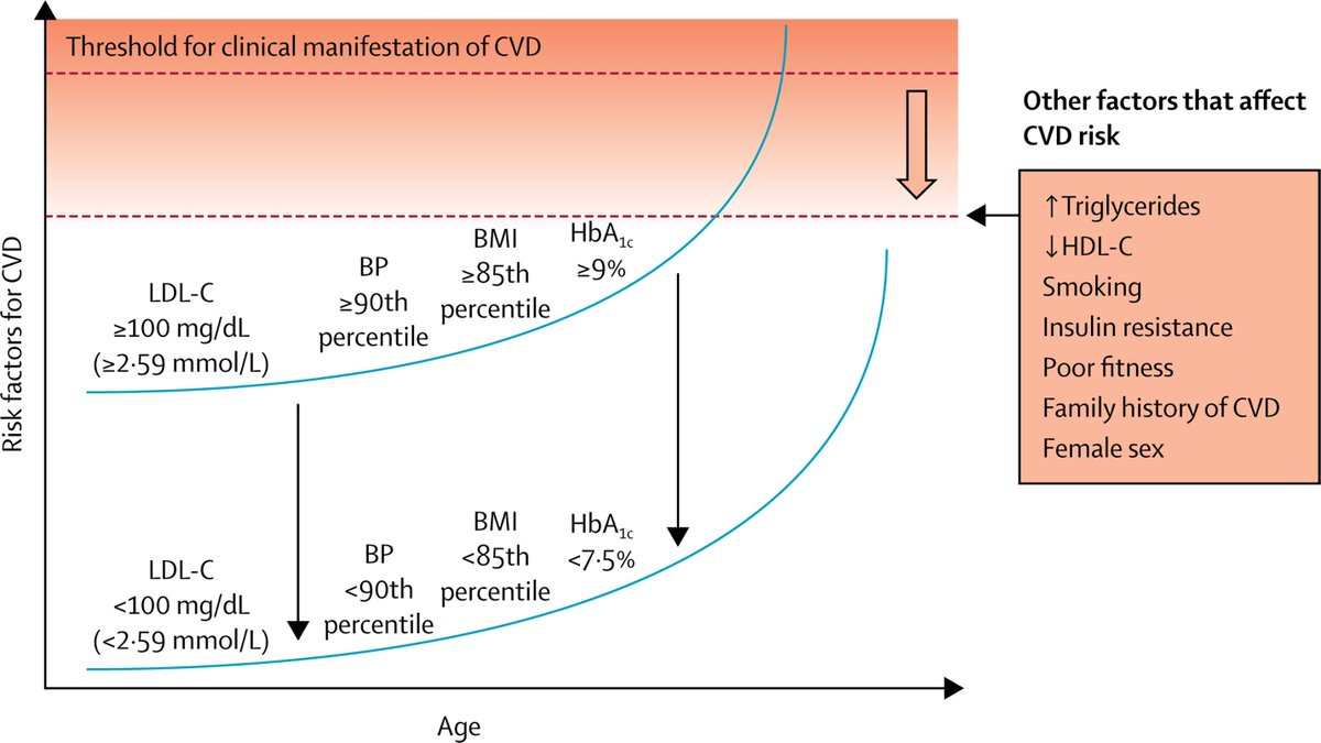 test Twitter Media - Latest Review: Macrovascular disease and risk factors in youth with type 1 #diabetes: time to be more attentive to treatment? https://t.co/NcNKutsh3G https://t.co/fGtAY08TMO