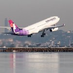 Hawaiian Airlines flight attendant soothes passenger's baby