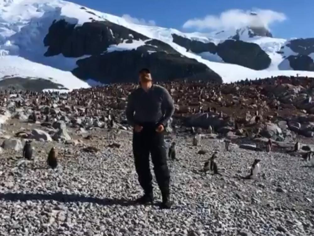 'Stranger Things' star David Harbour dances with penguins in Antarctica