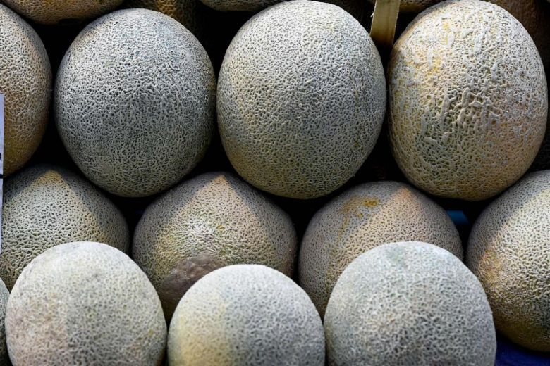 Supermarkets offering refunds on Australian rock melon purchases amid expanded recall