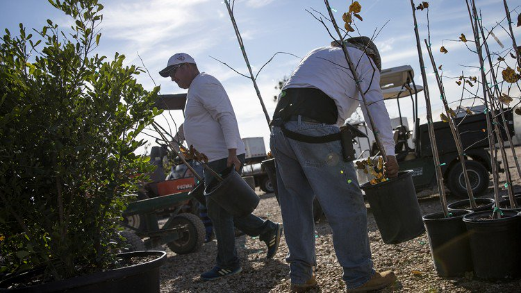 In tight labor market, Austin employers kept up pace of job growth