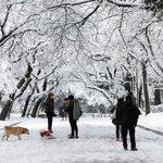 Freeze engulfs Europe, rare Rome snow disrupts flights