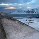 Arche de Noé du Svalbard : un million d'espèces végétales à l'abri