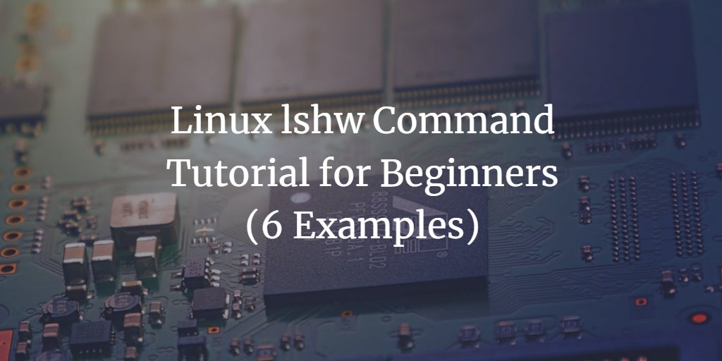 Linux lshw Command Tutorial for Beginners (6 Examples). https://t.co/RhPQAlEmVm @howtoforgecom #Linux https://t.co/vEjpzAyukC