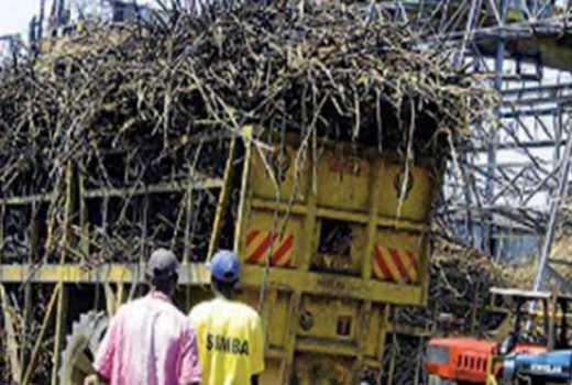 Tanzanian firm eyes Kilifi with a sugar manufacturing plant
