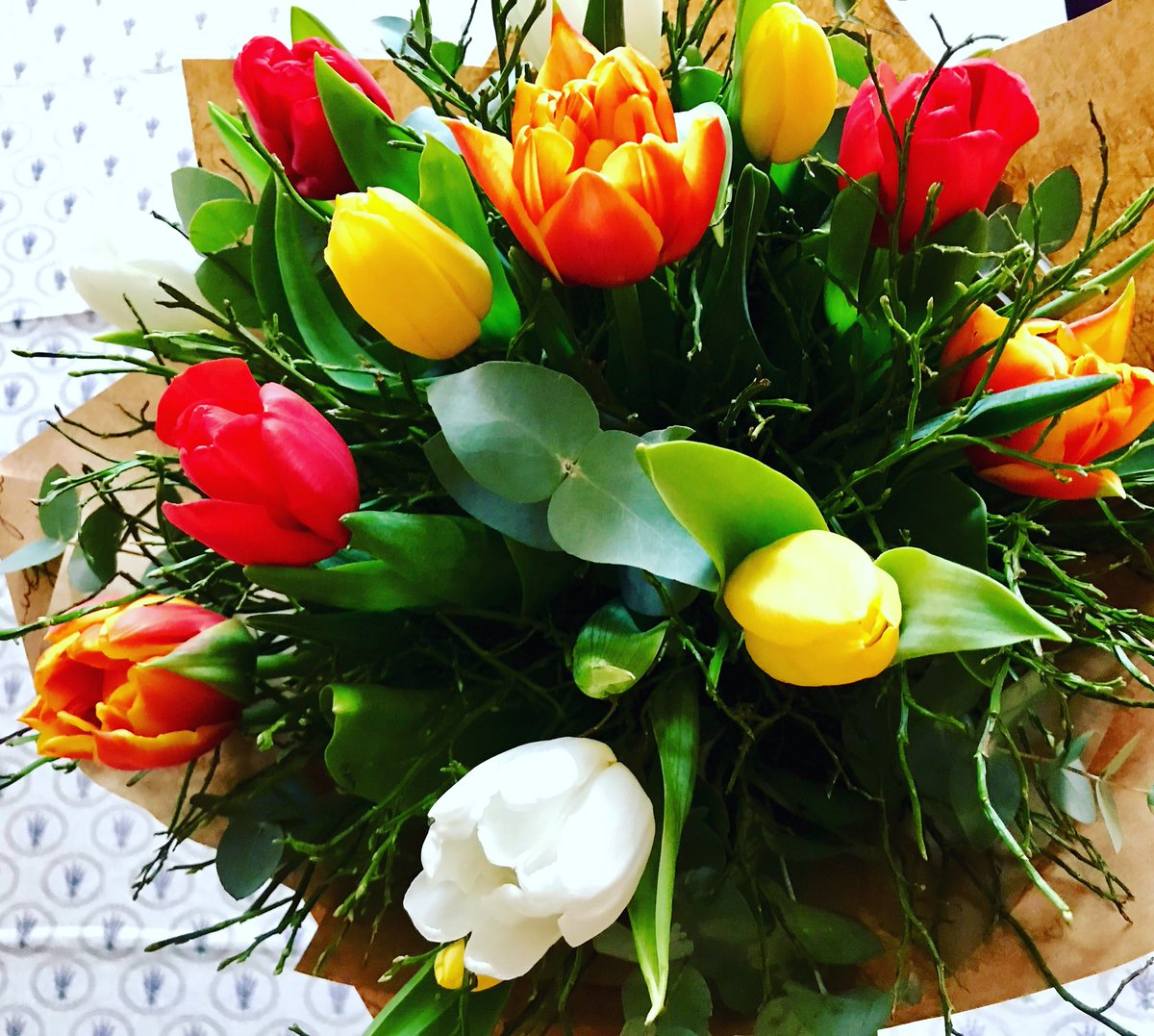 Feels like the spring is coming.. can't wait.. 💐 #tulips #flowers #colors #home rRn9PJx